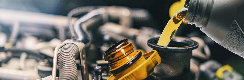European Auto Oil Change Service
